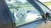 """EXPERIMENT INEDIT! De ce să nu-ți lași niciodată câinele închis în mașină: E o """"capcană mortală"""""""