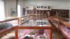 O colecţie de mumii din anul 400 î.Hr ,ameninţate de conflictele de Yemen