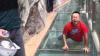 TE TREC FIORII! Reacțiile îngrozite ale turiștilor care traversează podul de sticlă din China (VIDEO)