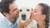 STUDIU: Câinii sunt influenţaţi emoţional de stăpâni