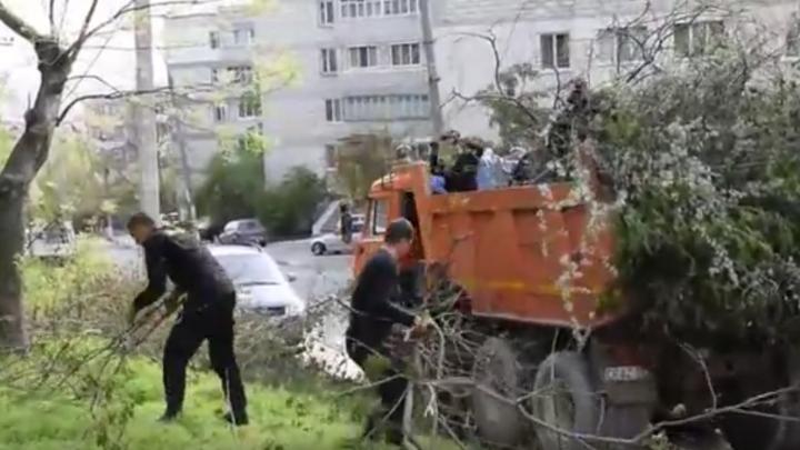 A cincea zi de salubrizare a municipiului Chișinău: 586 de camioane cu arbori și crengi au fost evacuate (VIDEO)