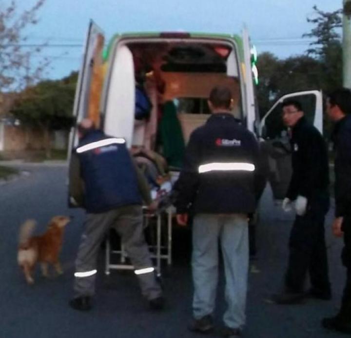 EMOŢIONANT! Un cățel și-a păzit stăpânul rănit pentru a-i alina durerea, până la sosirea medicilor (FOTO)