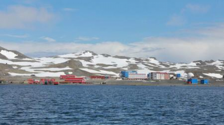 """ÎNCĂLZIRE GLOBALĂ. În urma creșterii temperaturilor cu circa 0,5 grade Celsius pe deceniu Antarctica """"înverzește"""""""