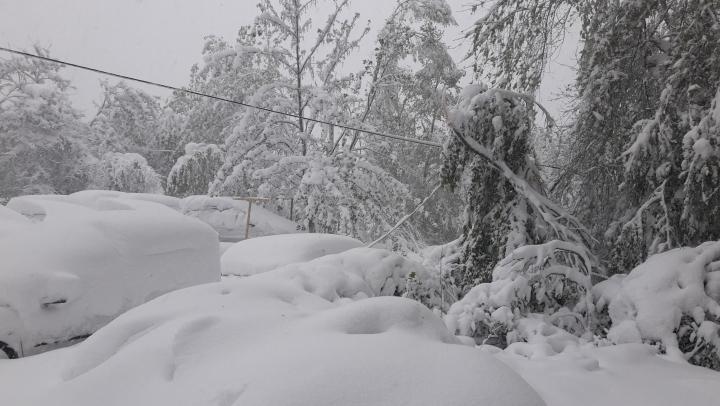 Vreme rea în Ucraina. Stratul de zăpadă ar putea atinge 50 de centimetri