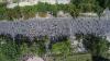 Câte persoane au participat la manifestaţia organizată de PAS, DA şi PN (FOTO)