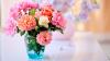 #LifeStyle: Pentru a creşte durata florilor ţinute în vază, trebuie să le îngrijeşti corect. Sfaturile specialiştilor