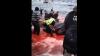 """Sute de balene, omorâte într-un ritual cunoscut sub numele de """"Mărunţirea"""""""