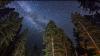 Un meteorit rar, vechi de 4,5 miliarde de ani, descoperit (VIDEO)