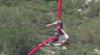 DANS PERICULOS la înălţime! O tânără a făcut mişcări în aer, fiind atârnată de picioare doar cu ajutorul unor pânze (VIDEO)