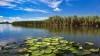 Hore şi bucate tradiţionale: Ziua internaţională a Dunării, marcată cu mult fast în sudul ţării