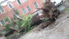 Furtuna de ieri a făcut VICTIME. O fetiţă din Volontiri a murit după ce a călcat pe un fir electric rupt