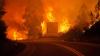 DEZASTRU în Portugalia. Incendiile de pădure au luat viaţa a 61 de oameni