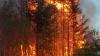 Incendii de vegetație în statul Arizona. Flăcările au cuprins deja peste 8300 de hectare și amenință câteva localități