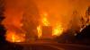 Incendiul catastrofal din Portugalia a luat cel puțin 62 de vieți. Guvernul a decretat 3 zile de doliu național (FOTO)