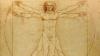 A fost descoperit un nou organ distinct, considerat la fel ca inima sau plămânii (FOTO)