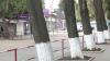 Curățenie la Piața Centrală: Cinci persoane reţinute, după ce i-au atacat pe carabinierii care demontau tarabele