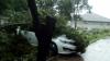 Încă un copac a căzut în sectorul Buiucani. Automobilul este blocat sub crengi