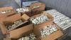 Doi moldoveni implicaţi într-o schemă de contrabandă cu ţigări în proporţii deosebit de mari (FOTO/VIDEO)