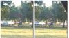 Scene de amor pasional într-un parc. Momentul fierbinte, filmat (VIDEO +18)