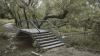 Parcul VALEA TRANDAFIRILOR din Chişinău, prinde viaţă. Va fi reamenajat până la începutul lunii iunie