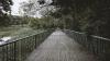 Au început lucrările de reparație în Parcul Valea Trandafirilor. Podul Îndrăgostiților va fi renovat