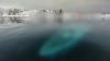 Descoperire terifiantă. Ce au găsit exploratorii sub apa îngheţată din Antarctica. Era acolo de zeci de ani (FOTO)