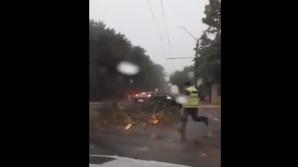 Furtună puternică în nordul țării. Copaci rupţi şi acoperişul unui bloc luat de vânt la Briceni (VIDEO)
