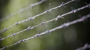 Zece deţinuţi de la Goian au susţinut examenul la istorie