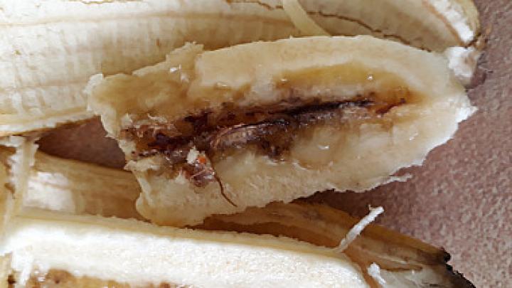 Imagini ȘOCANTE: Ce a găsit o femeie din Bălți în bananele pe care le-a procurat de la piață