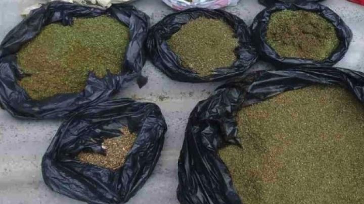 25 de kg de droguri au fost sechestrate de la începutul anului. Care droguri sunt cel mai des comercializate în Republica Moldova