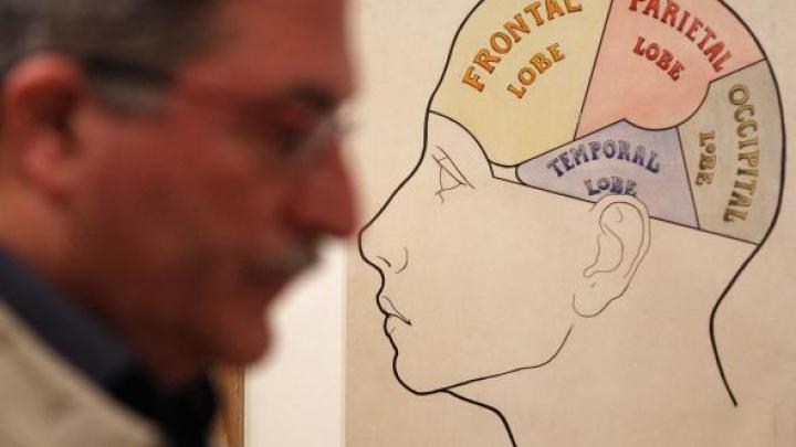 Descoperire INEDITĂ: Un hormon secretat de stomac îmbunătățește memoria