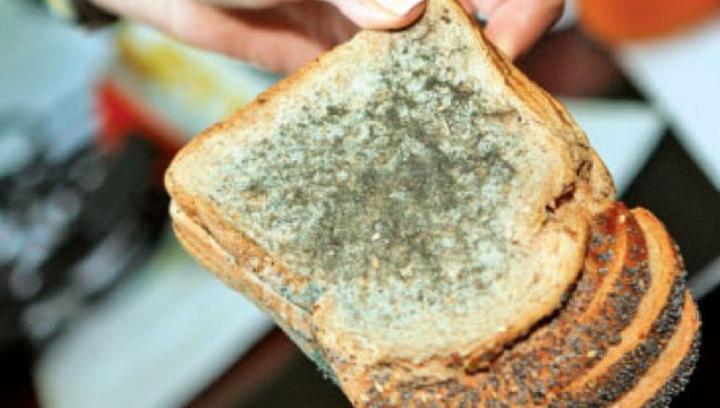 MUCEGAIUL pe alimente: Când este periculos și când nu