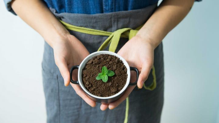 Cel mai bun îngrăşământ ecologic. Cum faci compost chiar dacă trăieşti la bloc