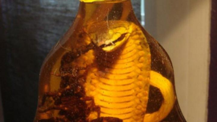 La un pas de o moarte tragică: A prins un șarpe și l-a pus într-o sticlă plină cu alcool. Ce s-a întâmplat după 3 luni