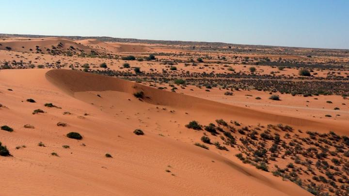 Descoperire înfiorătoare. Bebeluși, găsiți morți în mijlocul deșertului african