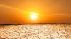 Organizația Meteorologică Mondială: Valurile îndelungate de căldură, combinație periculoasă pentru sănătatea umană
