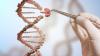 """""""Cât vom trăi?"""" Răspunsul stă în 16 markeri genetici. S-au descoperit LUCRURI UIMITOARE"""