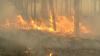 Italia şi Rusia, pârjolite de incendii de pădure. Sute de pompieri luptă cu flăcările uriaşe
