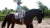 Competiţie de hipism în Capitală: Zeci de copii s-au întrecut călare pe cai pentru a-şi demonstra măiestria