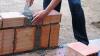 Moldovenii reînvie claca de odinioară. Mai mulți oameni îşi oferă braţele de muncă familiilor nevoiaşe, absolut gratuit