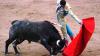 Victime la cursele cu tauri din Spania: 77 de oameni, răniţi (Imagini care vă pot afecta emoţional)
