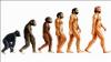 Turcia a scos din programa școlară teoria evoluției:  Asta este minte îngustă şi ignoranţă
