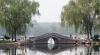 Beijingul vrea să construiască un parc de panouri solare în formă de urs panda (VIDEO)