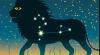 HOROSCOP 28 iulie 2017: Leu, s-ar putea să găsiţi noi colaborări pentru viitor