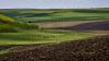 Producţia agricolă, în scădere din cauza vremii capricioase şi rece din această primăvară