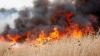 Incendiu de vegetaţie devastator în Arizona: Sute de pompieri luptă cu flăcările, ajutați de avioane și elicoptere