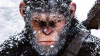"Pelicula ""War for the Planet of the Apes"" a luat cu asalt box office-ul nord-american"