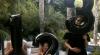 Renumita actriță americană Jessica Alba va deveni mămică pentru a treia oară
