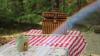 În Chişinău a fost lansat serviciul de livrare a seturilor pentru picnic