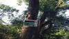 Căsuțele dintr-un parc din Ciocana, fără autorizație. Agentul economic ar fi încasat zilnic până la 12.000 lei (VIDEO)